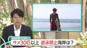 日本 鮫 事故 画像