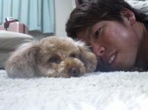 前田健太 ペット 犬 画像